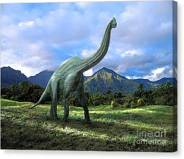 Brachiosaurus In Meadow Canvas Print by Frank Wilson