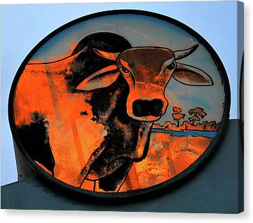 Brahman Bull Sign 1960s Canvas Print by David Lee Thompson