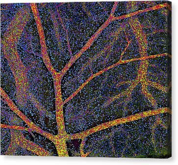 Brain Tissue Blood Supply Canvas Print by Thomas Deerinck, Ncmir