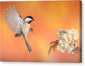 Canvas Print featuring the photograph Braking For The Rose Hip by Gerry Sibell