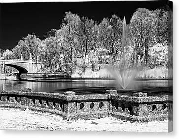 Canvas Print featuring the photograph Branch Brook Park New Jersey Ir by Susan Candelario