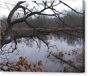 Branches And Pond Canvas Print by Michael L Kimble