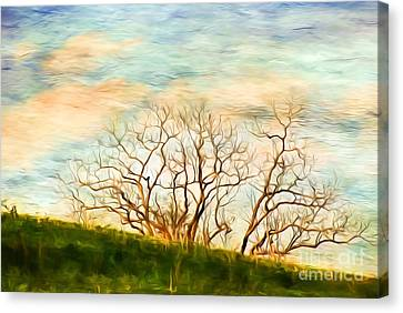 Bare Trees Canvas Print - Branching Out by Kerri Farley