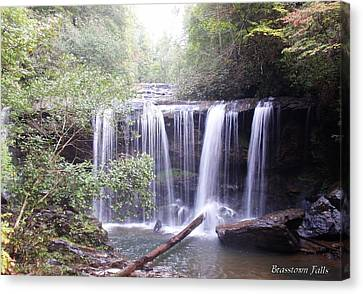 Brasstown Falls Canvas Print by Lane Owen