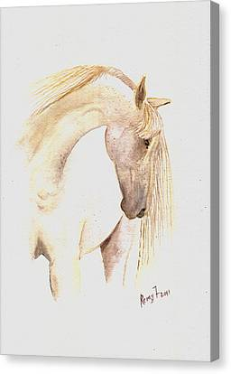 White Horse From The Wild Canvas Print by Remy Francis
