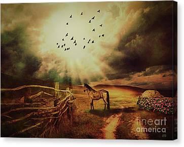 Sun Rays Canvas Print - Breaking Sun by KaFra Art