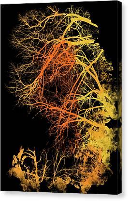 Natural Landscape Canvas Print - Breath Of Winter  by Andrea Mazzocchetti