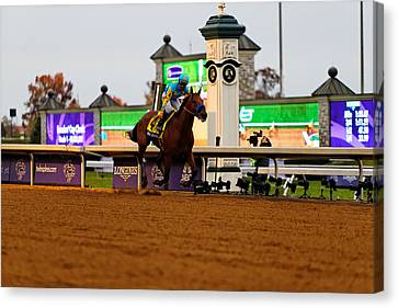 Breeder's Cup 3 Canvas Print by Lone Dakota Photography