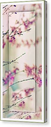Canvas Print featuring the photograph Breezy Blossom Panel by Jessica Jenney