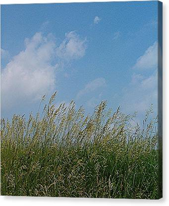 Canvas Print featuring the photograph Breezy Day by Sara  Raber