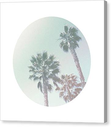 Breezy Palm Trees- Art By Linda Woods Canvas Print