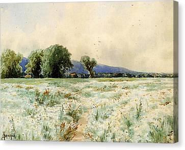 Bricher Alfred Thompson The Daisy Field Canvas Print