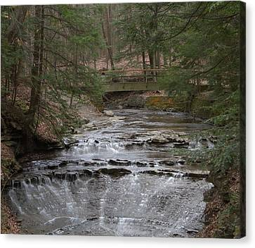 Bridal Veil Falls Ohio Canvas Print by Dan Sproul