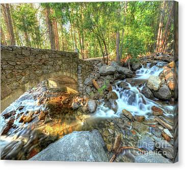 Bridalveil Creek At Yosemite By Michael Tidwell Canvas Print