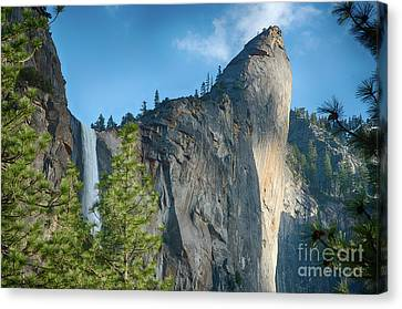 Canvas Print - Bridalveil Fall Yosemite National Park by Terry Garvin