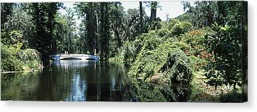 Garden Scene Canvas Print - Bridge Across A Swamp, Magnolia by Panoramic Images