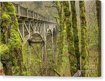 Rivers In The Fall Canvas Print - Bridge At Latourell Falls Oregon by Dustin K Ryan
