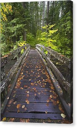 Bridge In A Park Canvas Print by Craig Tuttle