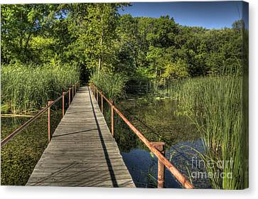 Canvas Print featuring the photograph Bridge Into The Forest At Lake Murray by Tamyra Ayles