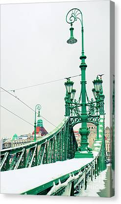 Bridge Of Liberty In Budapest Canvas Print by Anastasy Yarmolovich