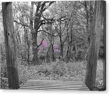 Bridge To Beauty Canvas Print