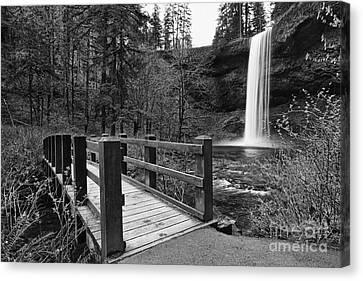 Green Lichen Canvas Print - Bridge To Falls by Jamie Pham
