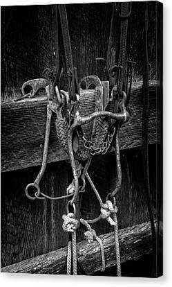 Bridle And Barn In Black And White Canvas Print