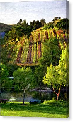 Bridlewood Canvas Print