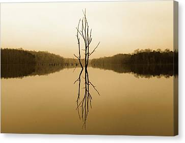 Canvas Print featuring the photograph Briery Creek  by Alan Raasch