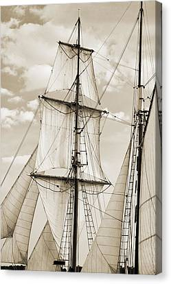 Brigantine Tallship Fritha Sails And Rigging Canvas Print by Dustin K Ryan