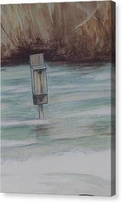 Brigham Pond Duck Box Canvas Print by Debra Sandstrom