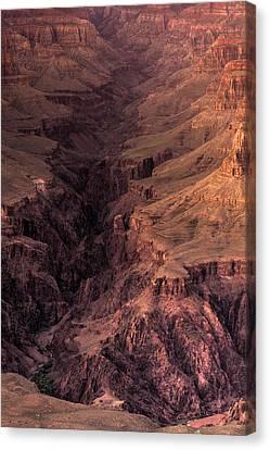 Bright Angel Canyon Grand Canyon National Park Canvas Print by Steve Gadomski