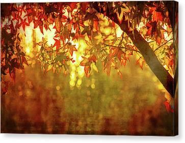 Maple Season Canvas Print - Bright Autumn Magic by Terry Davis
