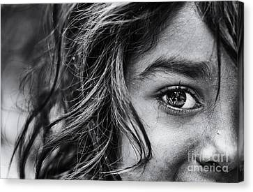 Bright Eyes Canvas Print by Tim Gainey