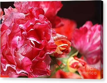 Canvas Print - Bright Rose Family by Joy Watson