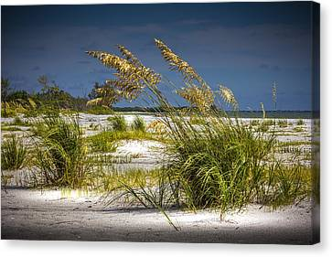 Bright Shore Canvas Print by Marvin Spates
