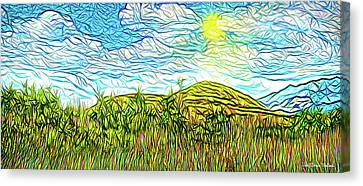 Bright Sky Summer - Field In Boulder County Colorado Canvas Print