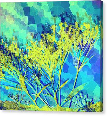 Brighter Day Canvas Print by Shawna Rowe