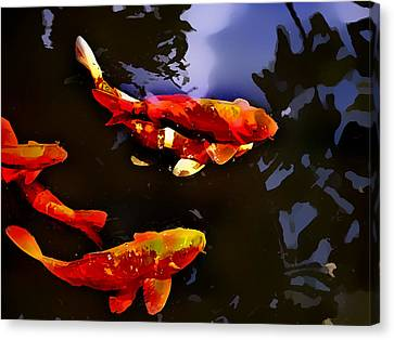 Brightly Colored Koi In Deep Blue Pond Canvas Print by Elaine Plesser