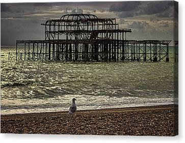 Brighton Pier Canvas Print by Martin Newman