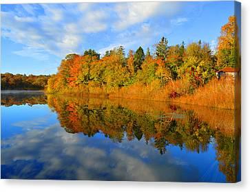 Brilliance Of Autumn Canvas Print by Dianne Cowen