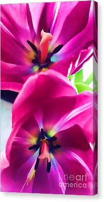 Canvas Print featuring the photograph Brilliance by Roberta Byram