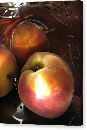 Canvas Print featuring the photograph Brilliant Peach by Lindie Racz