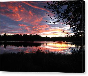 Brilliant Sunset Framed By Tree Canvas Print