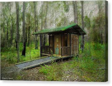 Brimbin Nature Reserve 01 Canvas Print by Kevin Chippindall