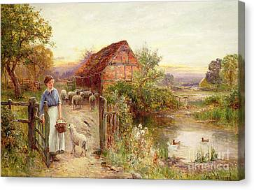 Lamb Canvas Print - Bringing Home The Sheep by Ernest Walbourn
