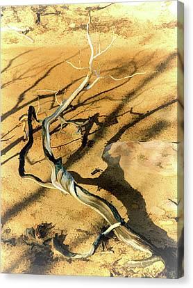 Brins Mesa 07-100 Burnt Canvas Print by Scott McAllister