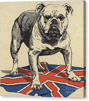 Bulldogs Canvas Print - British Bulldog Standing On The Union Jack Flag by English School