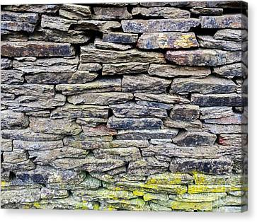 British Dry Stone Wayy, Photo By Mary Bassett Canvas Print