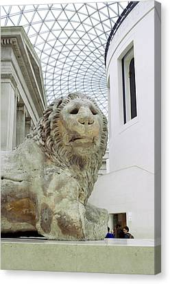 Britmuseumlion 0064 Canvas Print by Charles  Ridgway